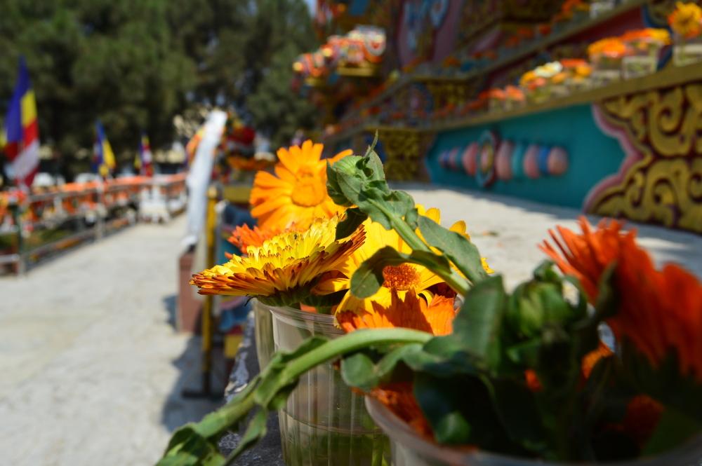Celebrating at Swayambhunath
