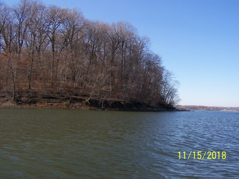 The Coralville Lake shoreline needs attention