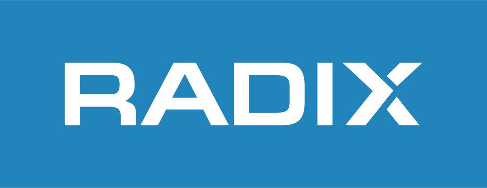 radix logo reverse on blue-06.jpg
