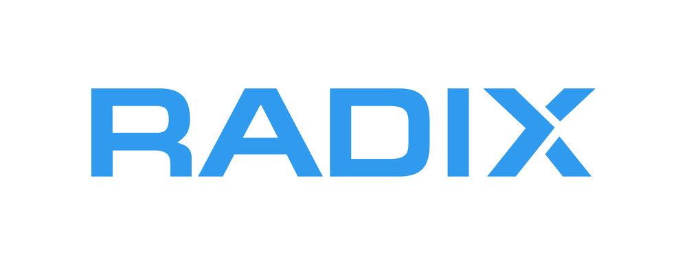 radix color logo-04 (1).jpg