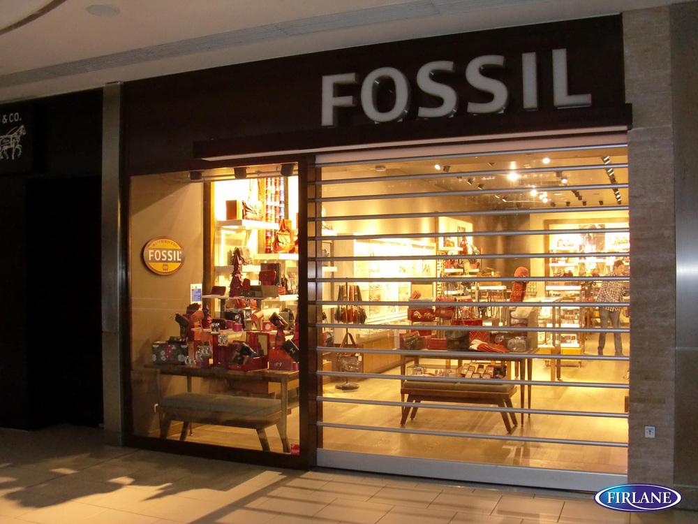 Image Fossil.jpg