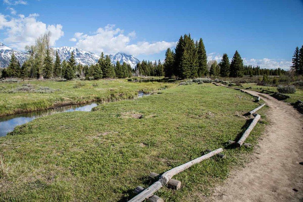 Trail To Beaver Pond