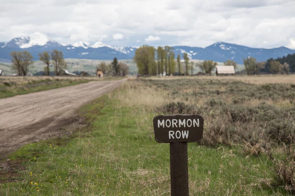 Turn on Mormon Road