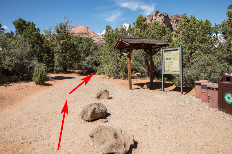 Trailhead is just past info sign