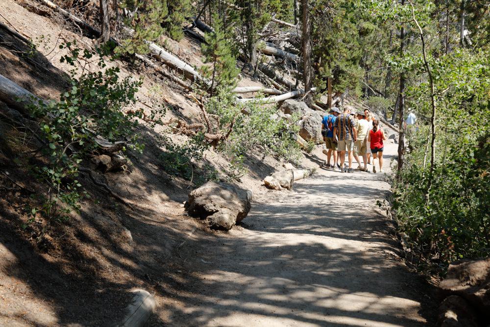 Trail down to falls