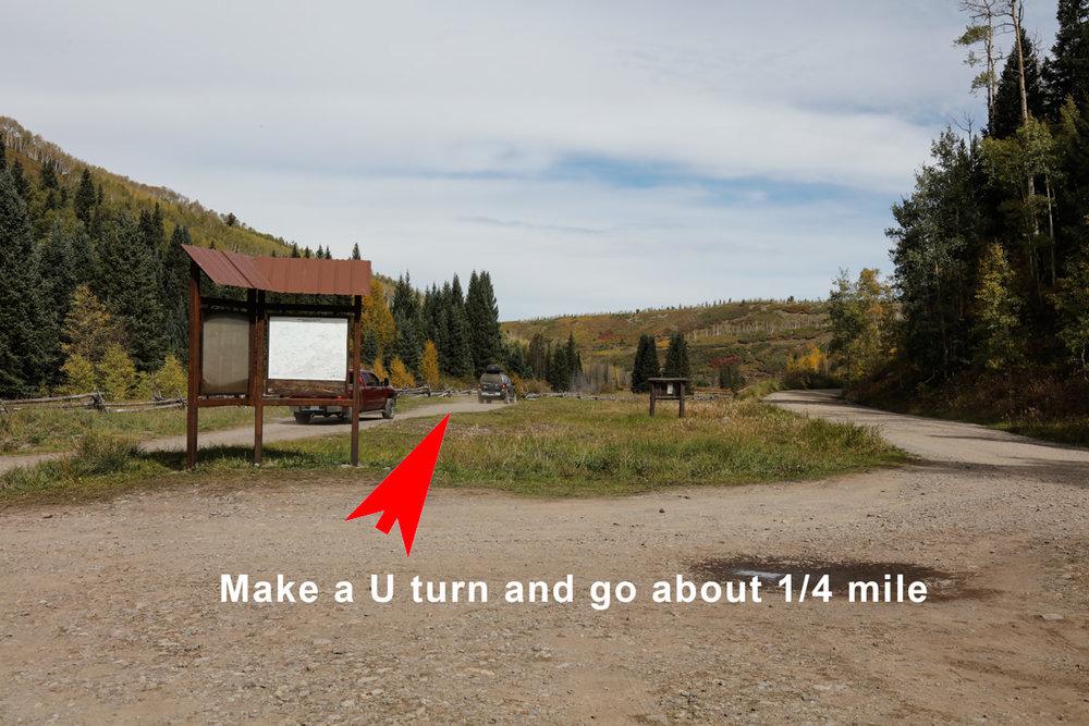 Meadow on CR7 (1 of 1).jpg