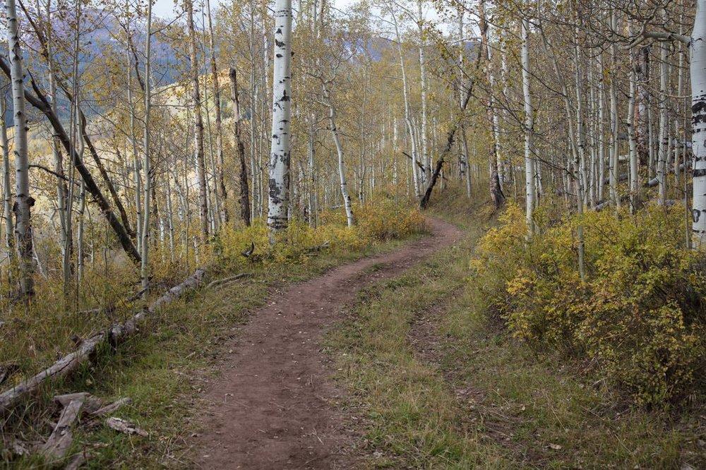Trail to alt location