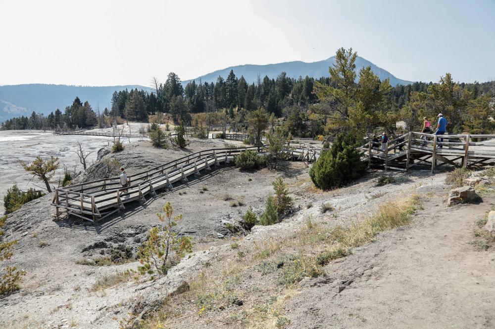 Mammoth Hot Springs (7 of 7).jpg