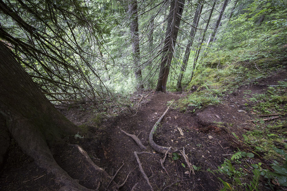 Trail is not easy