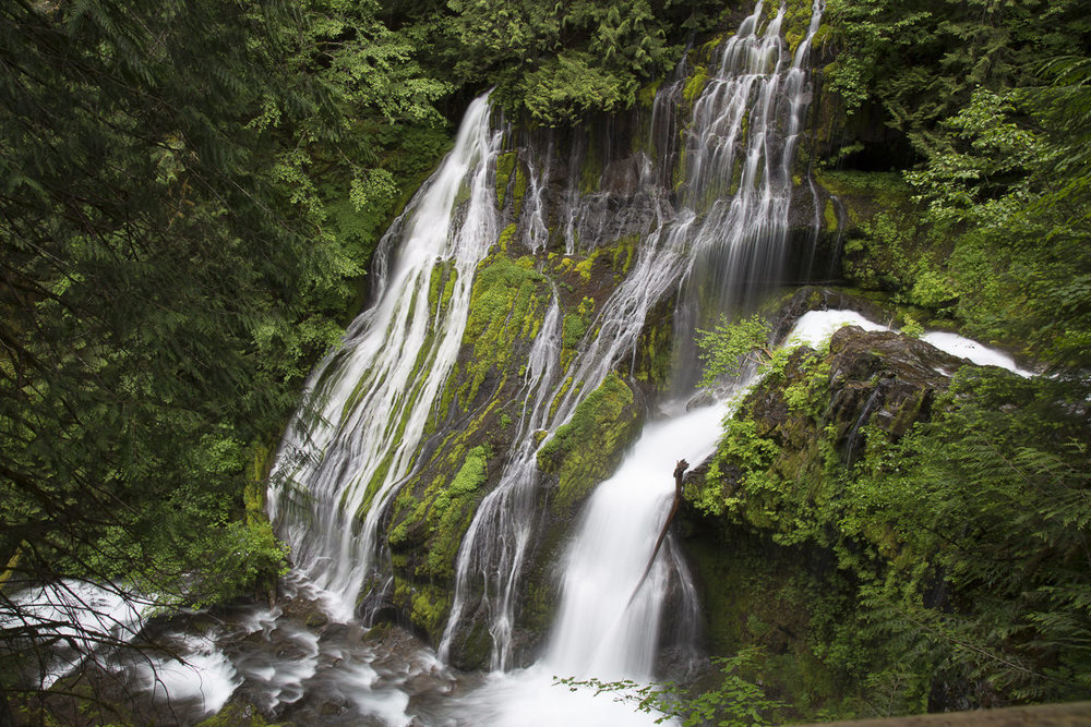 Falls from the viewing stand