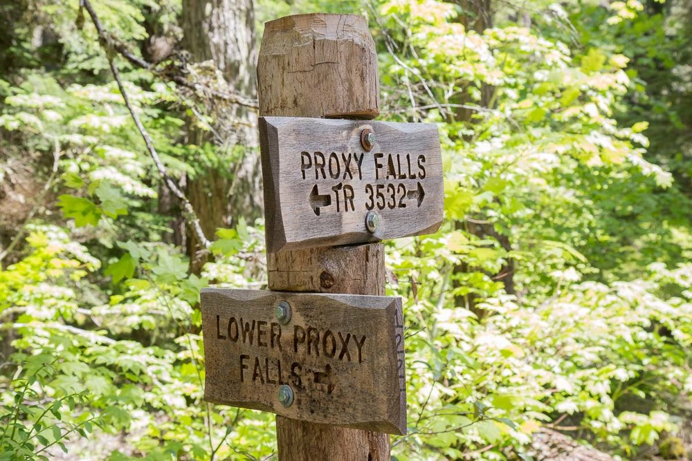 Take the lower Proxy Falls