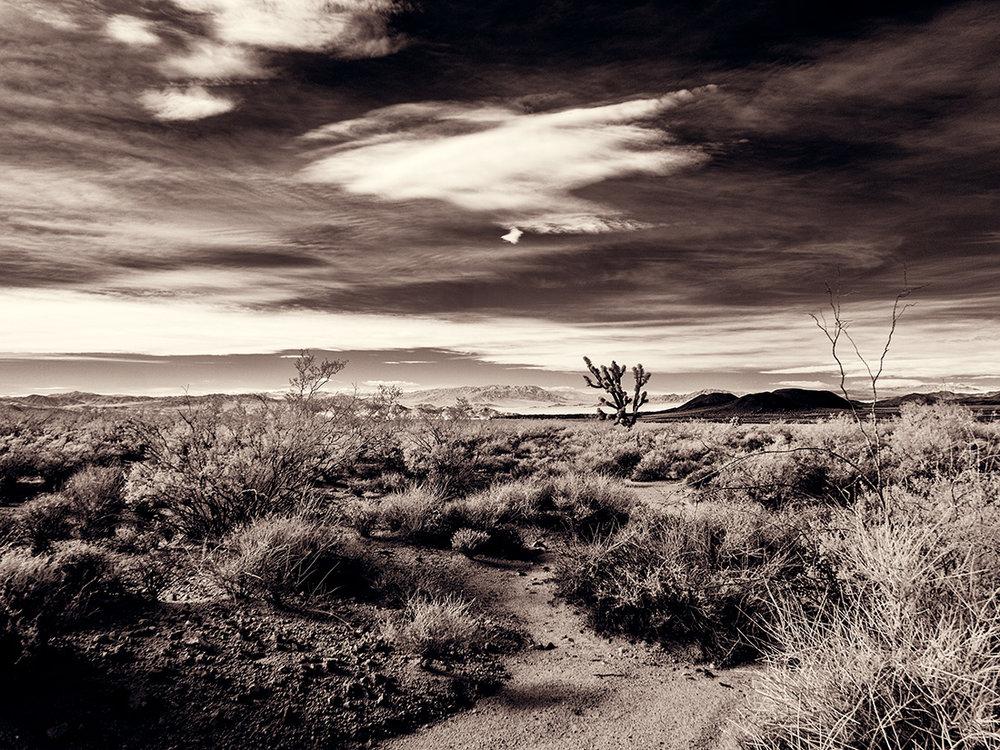 spectroland_desert_1100_004.jpg