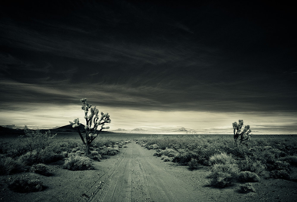 spectroland_desert_1100_001.jpg