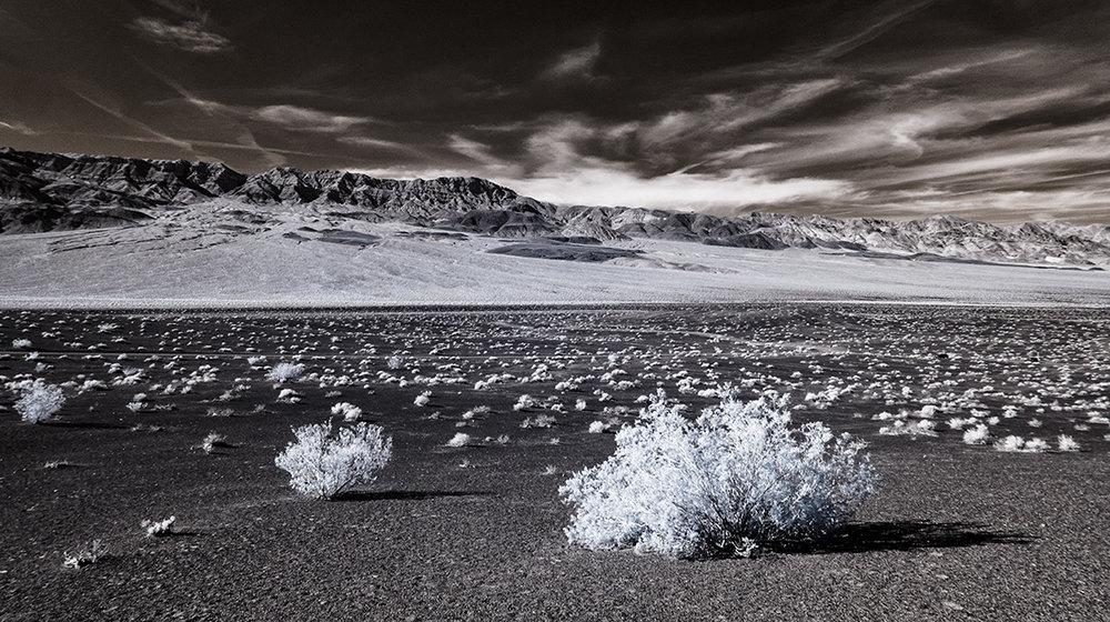 spectroland_desert_1100_074.jpg