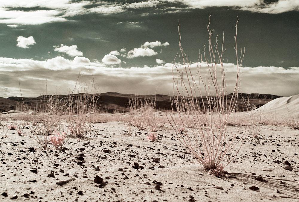 spectroland_desert_1100_075.jpg