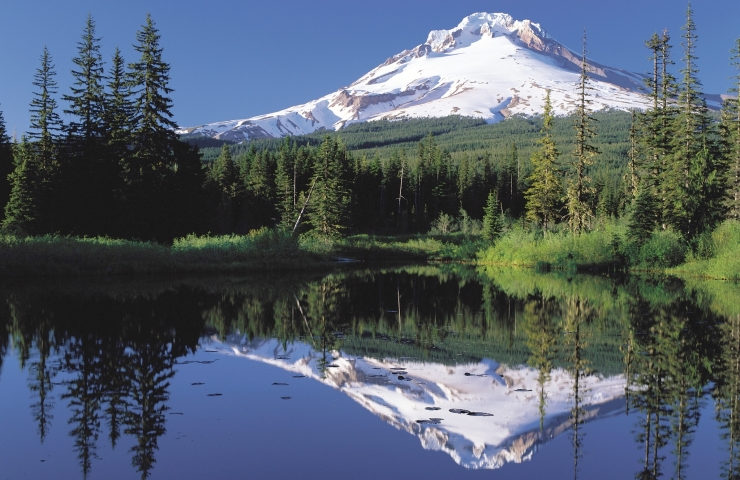 Columbia Gorge & Mt. Hood - $129 This is inclusive of the stops on the Columbia River Gorge Waterfalls Tour, then continues further into the Oregon backcountry. After the waterfalls, the route heads to the windsurfing capital of the world, Hood River where we'll dine downtown. Lunch is not included, but many reasonable and local restaurants will be available. The tour then continues through Oregon's Fruit Loop, a stunningly picturesque fruit growing region, on the way to the Timberline Lodge, which is situated 6600' above sea level on Mt. Hood.