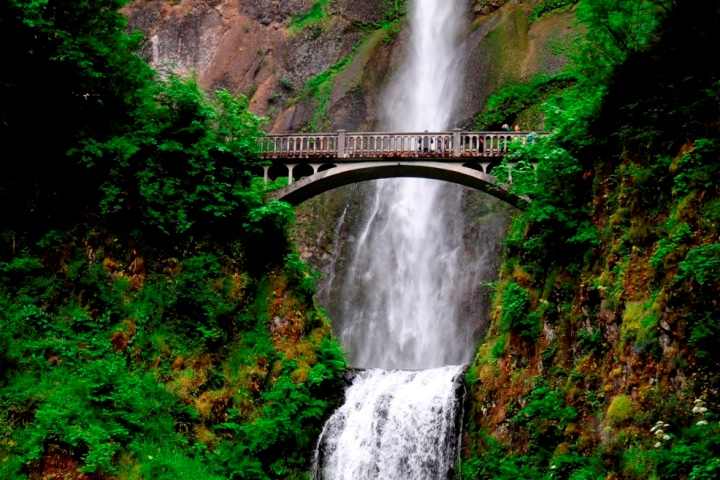 Waterfall Tours - $69 This tour heads directly East along the Columbia River to the quaint town of Troutdale, known as the Gateway to the Gorge! There, we will join the beautiful Historic Columbia River Highway and wind our way along the Sandy River to our first stop for the day, Crowne Point Vista House. We'll then drive deeper into the Columbia River National Scenic Area, with our first waterfall sighting of the day to be the dramatic Latourell Falls, plunging 249 feet over a massive wall of columnar basalt! The next waterfall we will visit will be the grand Multnomah Falls, the highest waterfall in Oregon and second highest in the nation! Our last stop will be the Bonneville Lock and Dam, a run-of-the-river dam that spans the Columbia River. There we will spend time on a short walking tour of the impressive Fish Hatchery (the largest in Oregon) and Sturgeon viewing center! (Tickets)