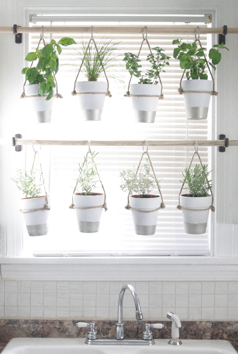 The bird and her song indoor hanging herb garden - How to hang plants in front of windows ...