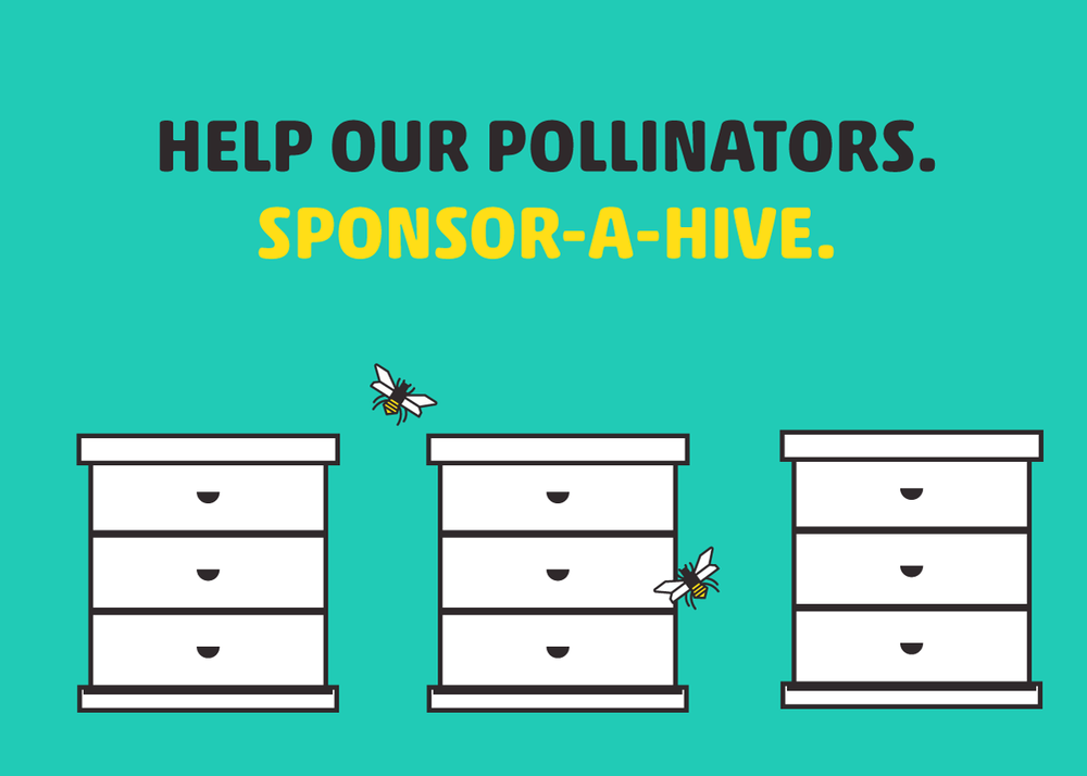 I worked with the HoneyBee Conservancy to promote their Sponsor-A-Hive Program, which seeks to educate children about pollinators by placing hives within schoolyards.