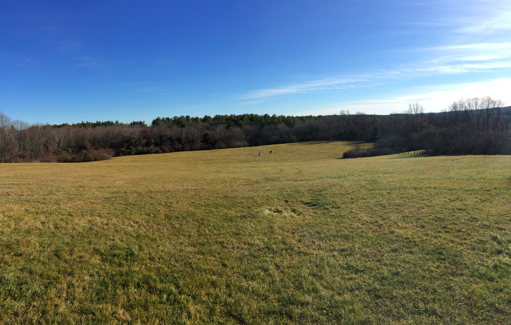 Benedictine Park