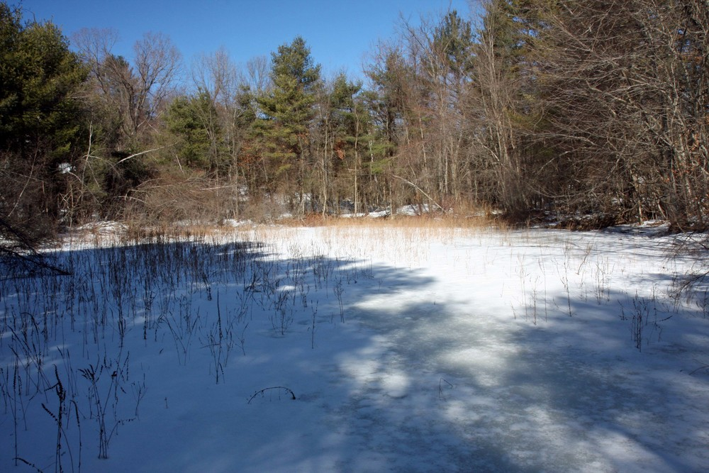 Fortin Conservation Easement