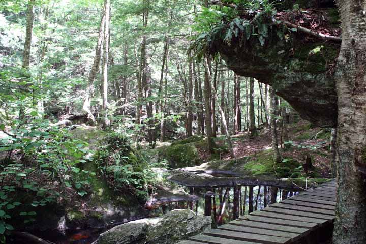 Pulpit Rock Ravine Trail.JPG