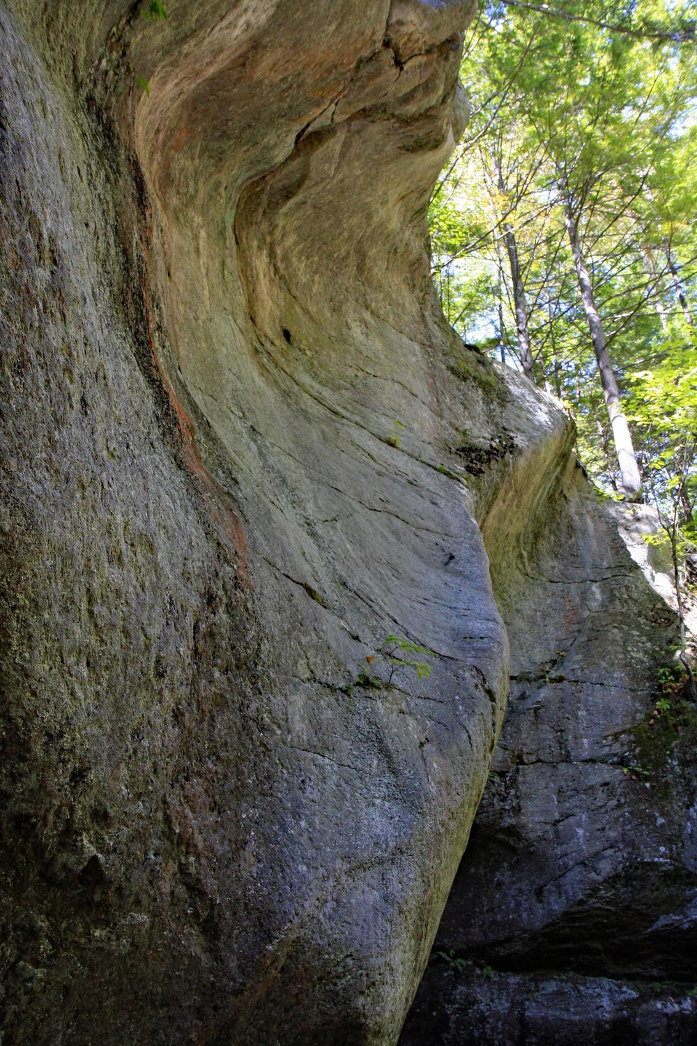 Sculpted rock at the base of the Pulpit