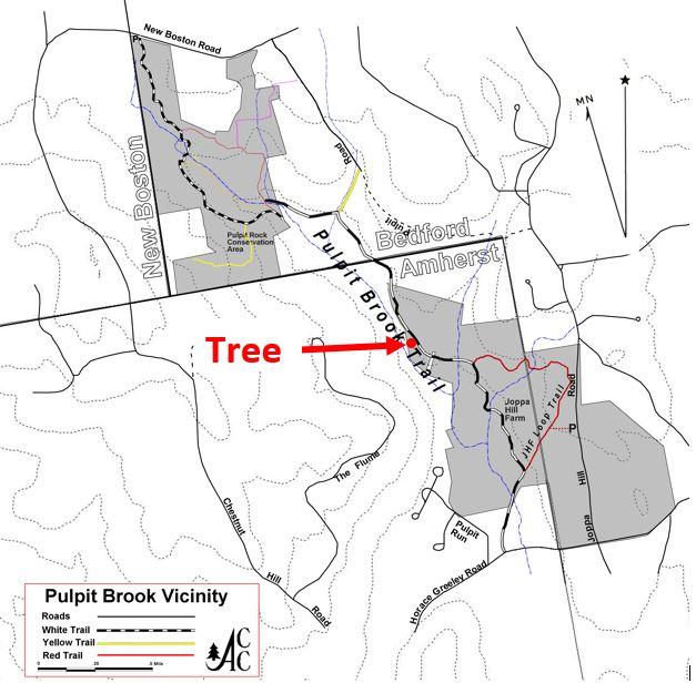Tree map.JPG