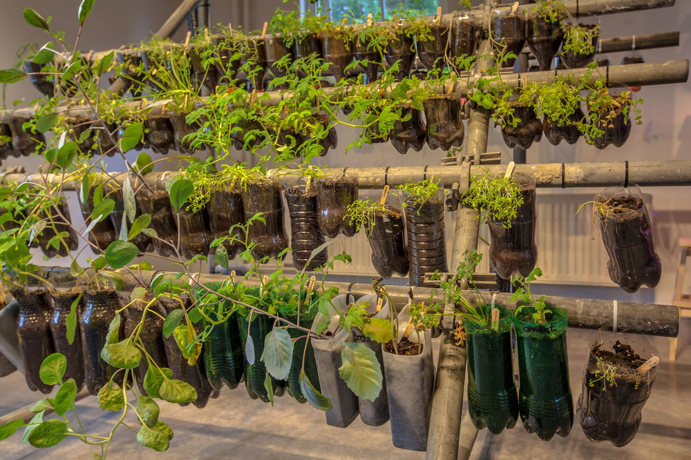 Indoor Herb and Vegetable Garden Made of Recycled Plastic Bottles