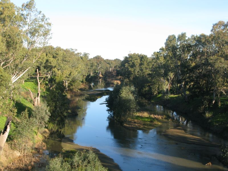 lachlan_river_at_cowra_nsw_img_1456.jpg