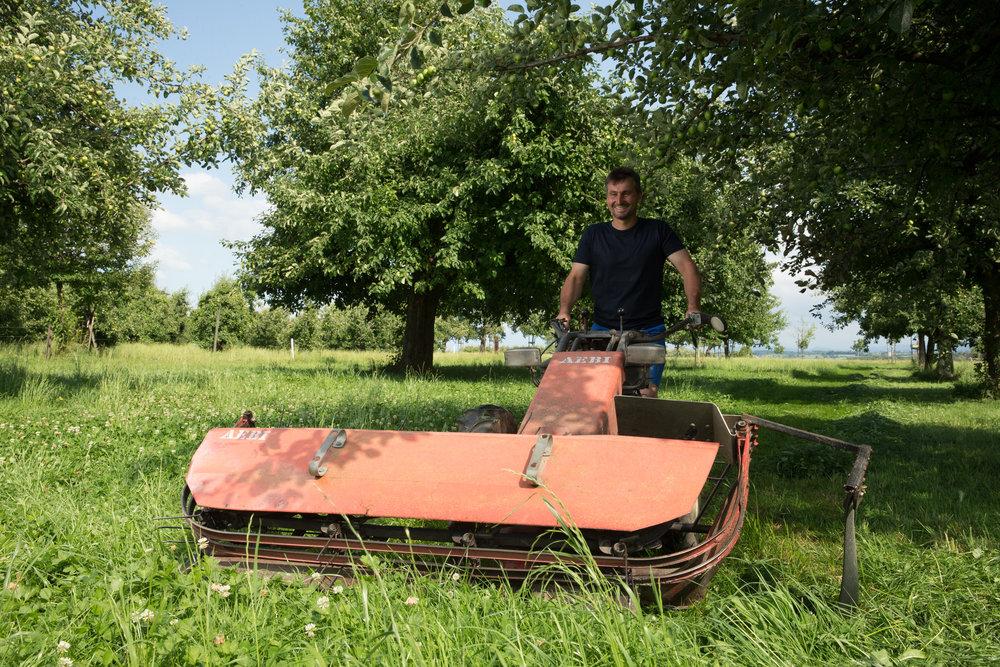 Landwirt zwischen seinen Obstbäumen im Mittelthurgau.
