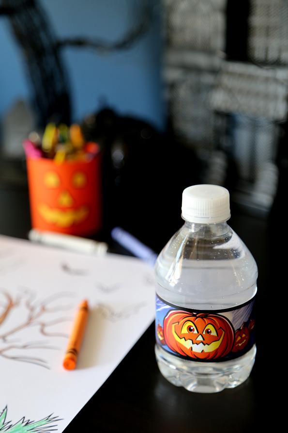 Pumpkin-bottle-595px.jpg
