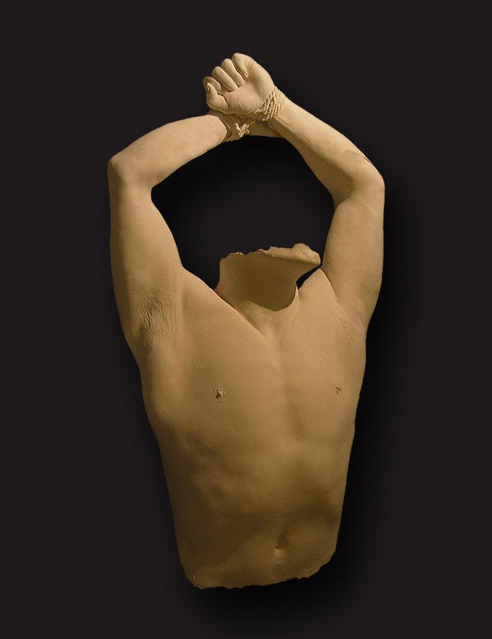 male torso.jpg