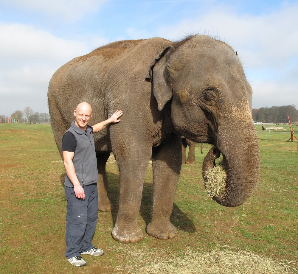André Masters and Chandrika the elephant