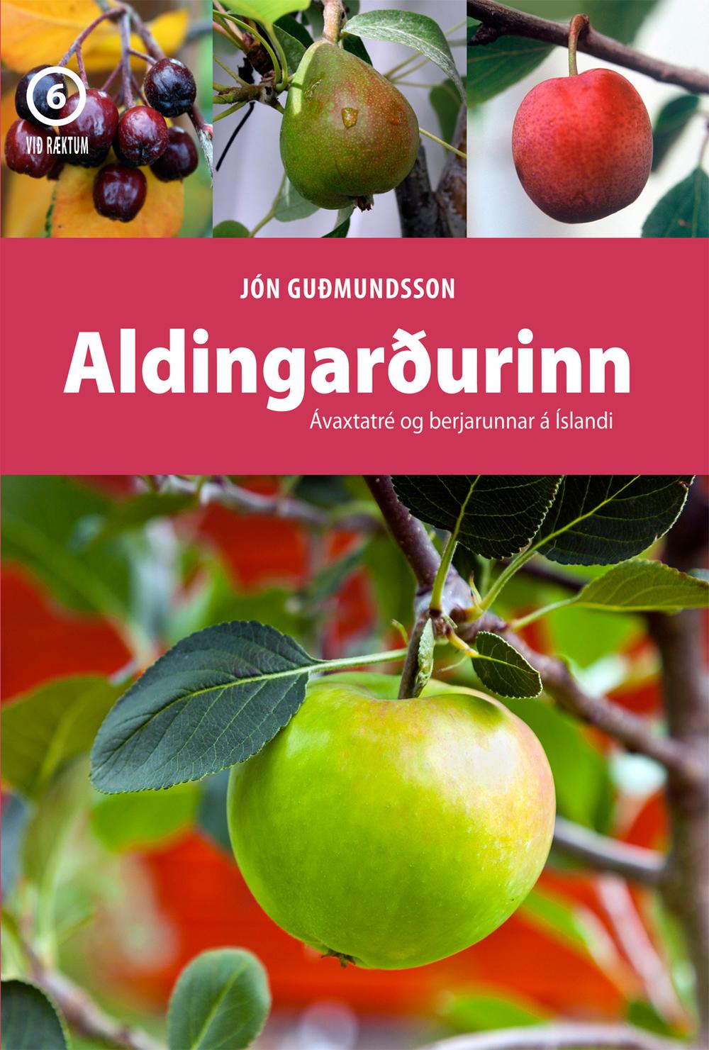 Cover aldingardur-2014-1024px.jpg