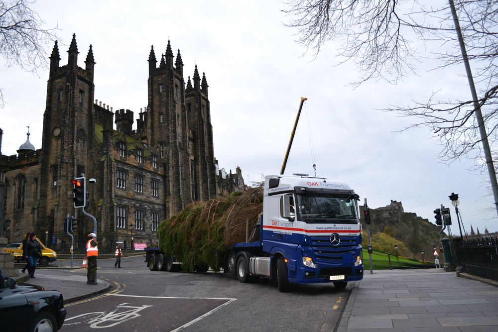 Galt Transportdelivering Edinburgh's Christmas tree to The Mound, Edinburgh