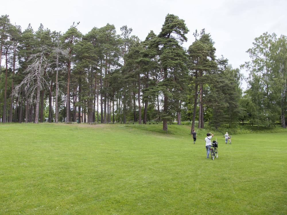 Sweden16-0620.jpg
