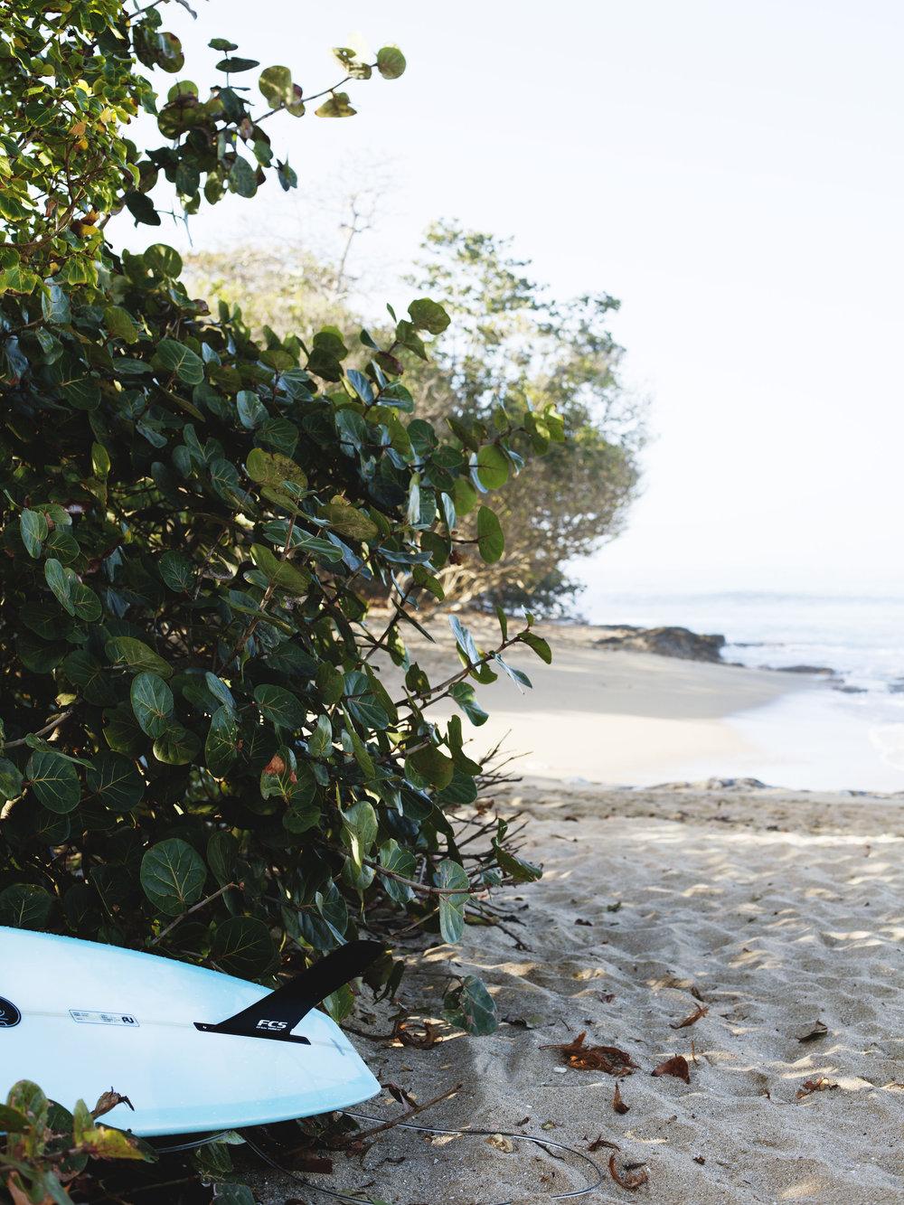 Puerto_Rico_35 copy.jpg