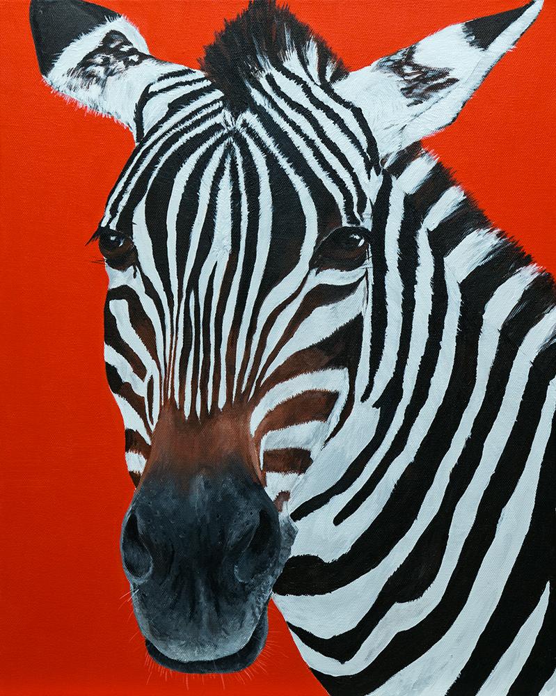 4 IMG_1781_zebra.jpg