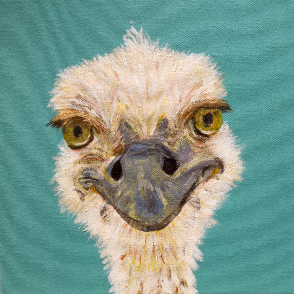 6 IMG_0027_adevlin_ostrich1.jpg