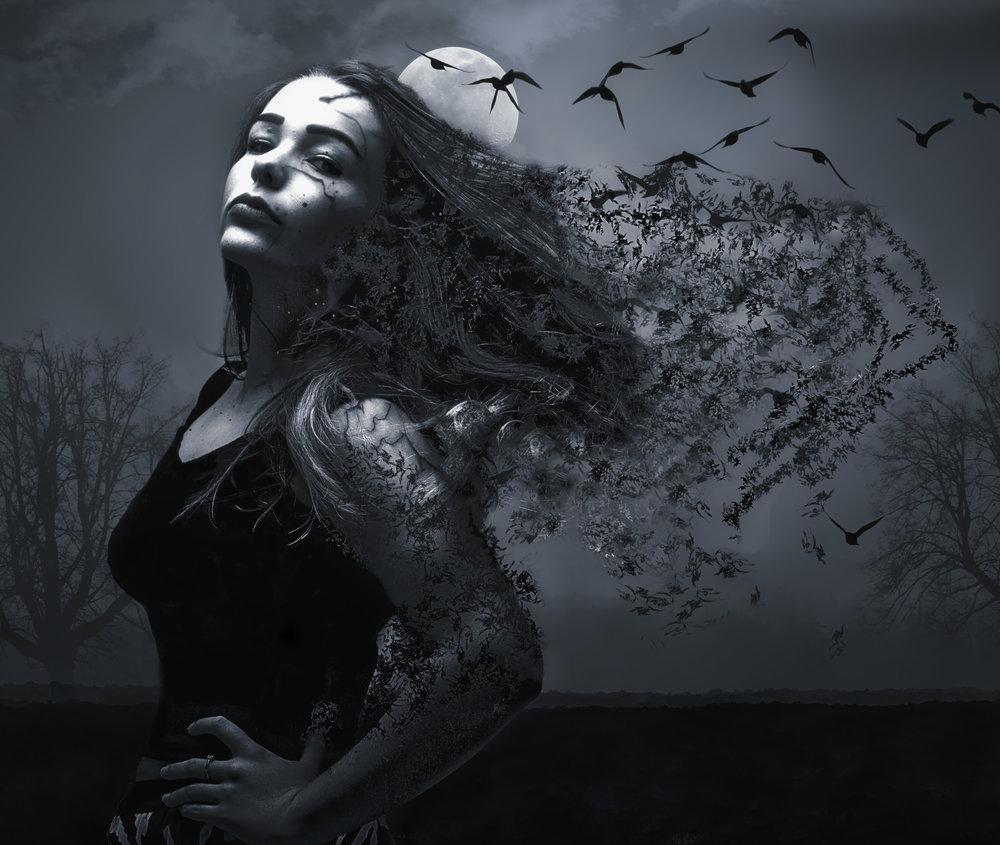 Sophie Disp.jpg