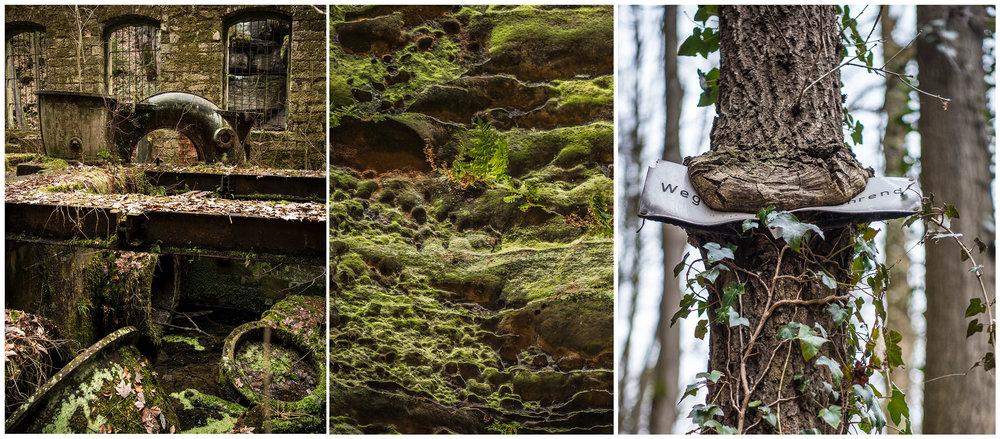 Een oude watermolen in puin, rotswanden met een bijna nucleair ogende kleur mos en een boom die de rotzooi van de mens opruimt. Of zie ik daar nou gewoon koekiemonster in volle actie?!! ;-)