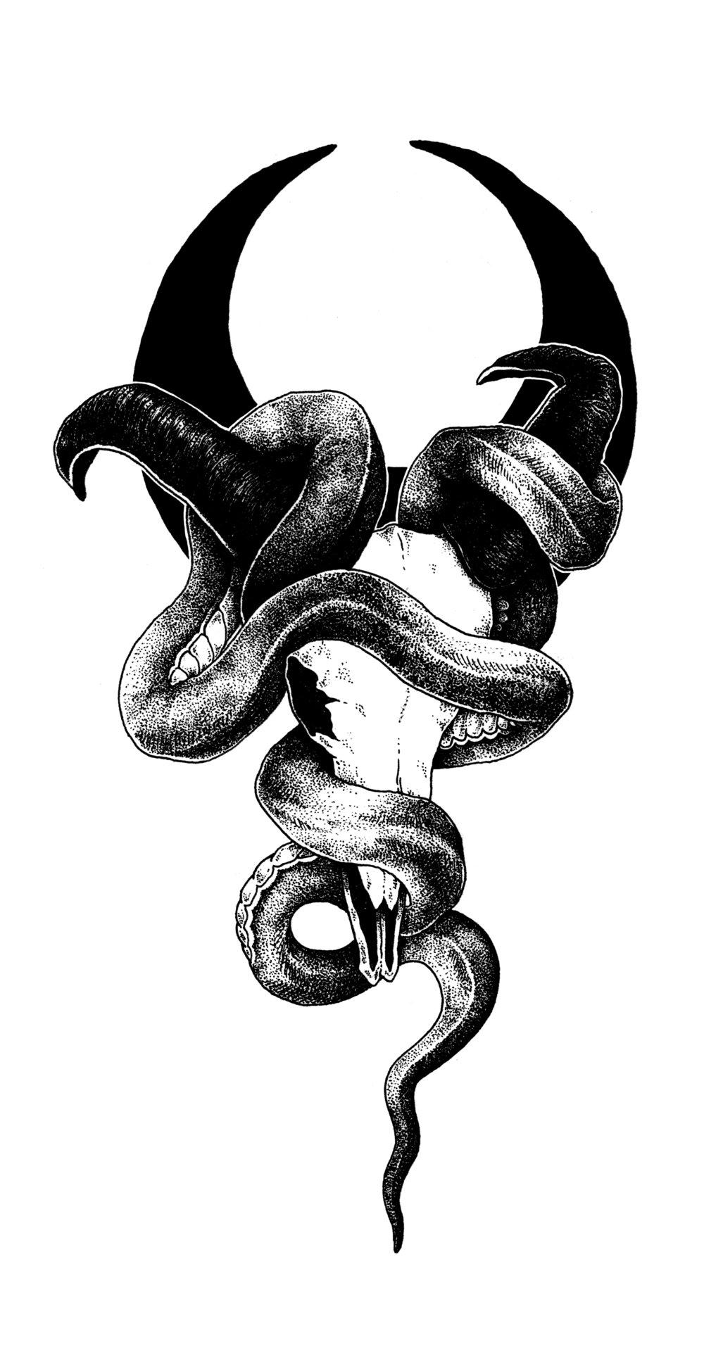 skullsnake.jpg