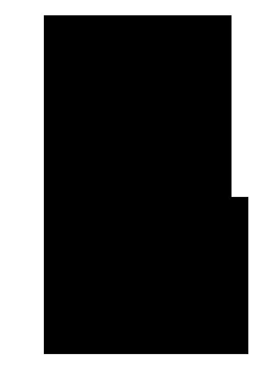Herbal Alphabet - Eucalyptus.png