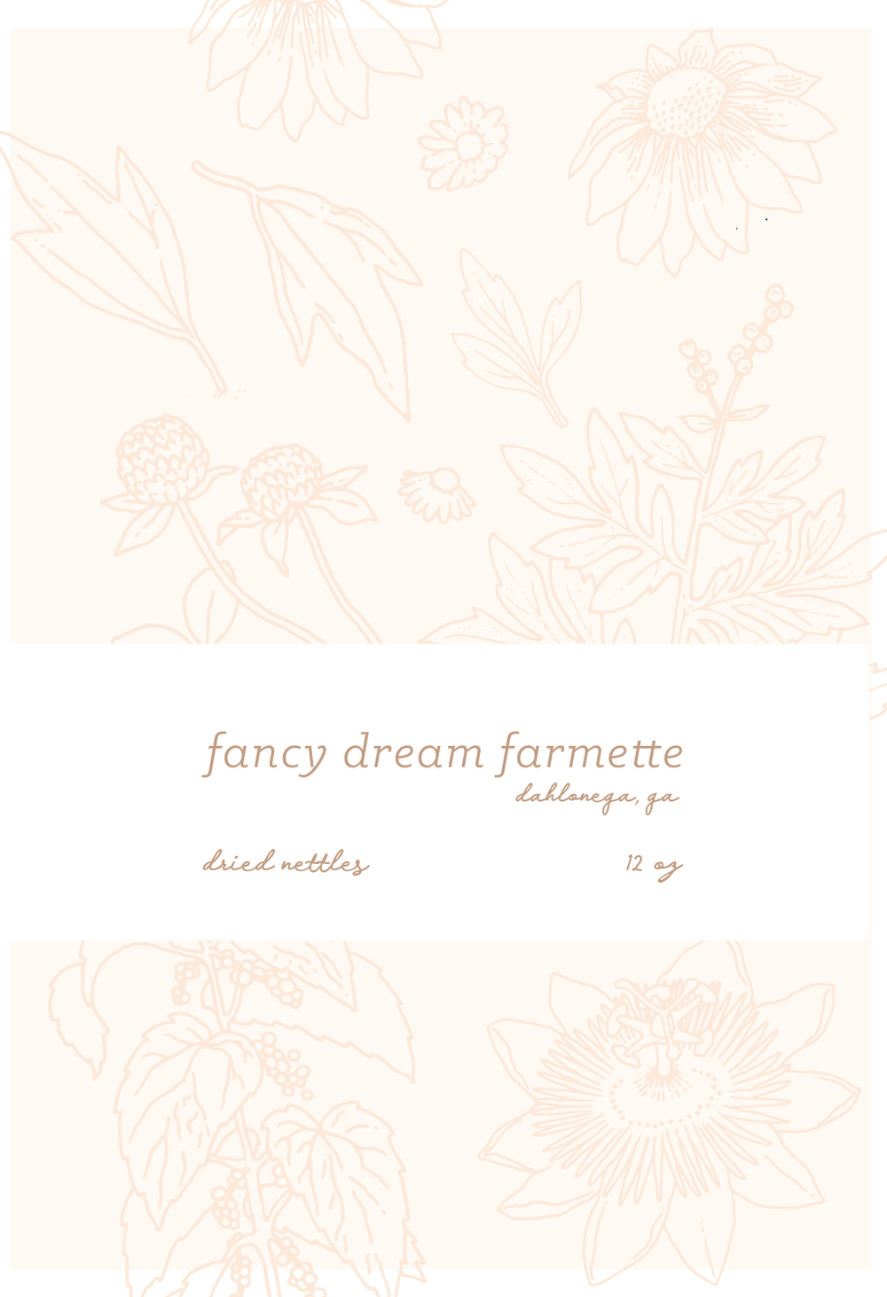 FancyDream Mock-01.png