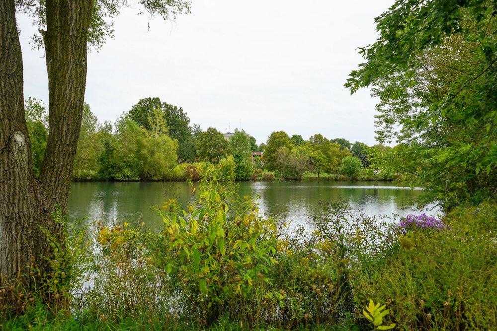 Crosstown Parkway Ponds