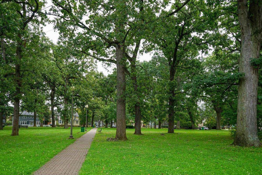South Westnedge Park