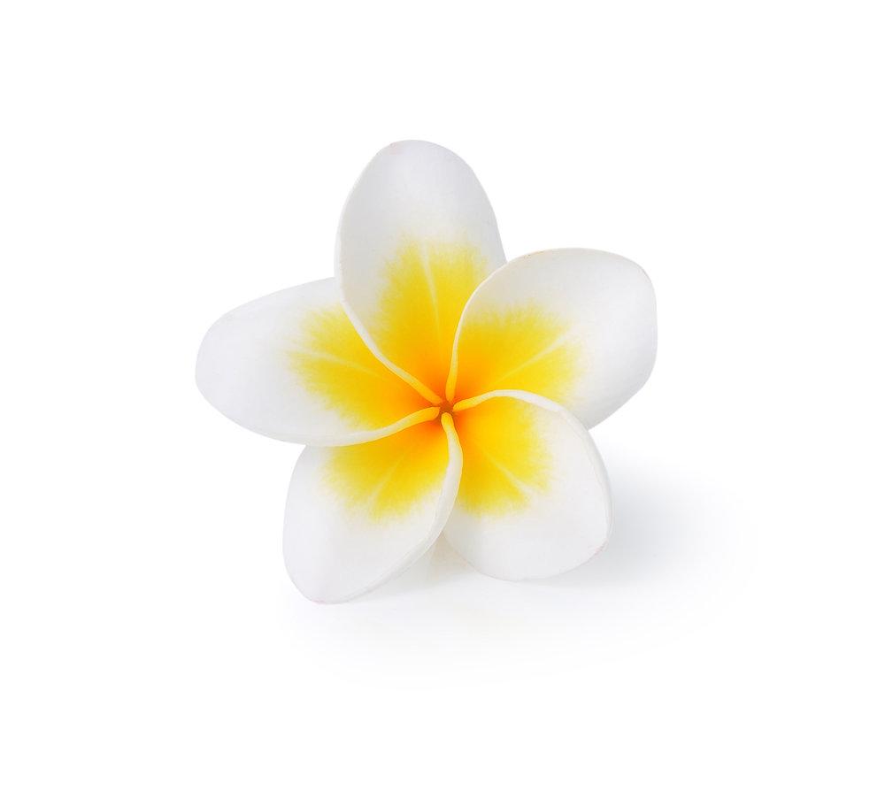 07 Gold flower before.jpg