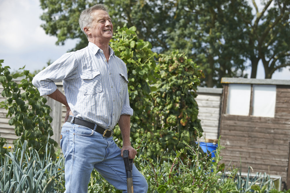 gardening sore back.jpg
