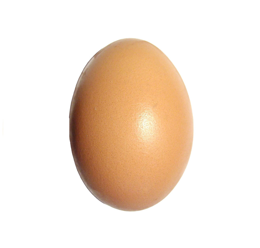 Eggs have lots of Collagen